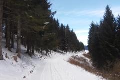 Giro del Monte Valbella