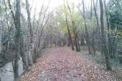Sentiero Valle delle Rù