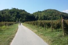 Valle San Floriano